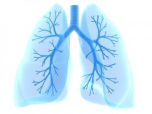 Pulmonary doctor